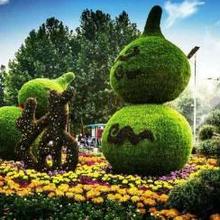 多种外观的立体几何体造型,植物立体景观雕塑造型定制图片