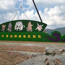 春节元旦主题大型绿雕生产图片