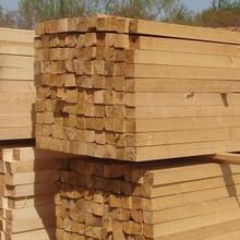 北京長期租賃批發舞臺搭建板地面保護板竹膠板多層板木模板圖片