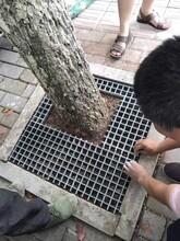 上海制造建诚市政专用树池篦子质量可靠,树池篦子扣件图片