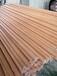 重慶環保建誠樹木支撐桿款式新穎,玻璃鋼樹木支撐桿