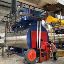 冷凝蒸汽锅炉-低氮