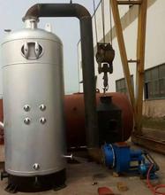 生物质燃煤两用锅炉,无尘生物质锅炉