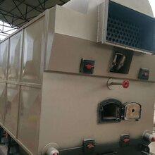 手动生物质锅炉,无尘生物质锅炉