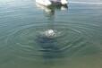(新闻)海西污水管道水下封堵哪家好