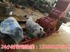 福建漳州小型制砂机市场