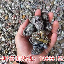 浙江衢州变压器破碎机图片图片