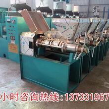 甘肃庆阳小型榨油机设计新颖图片