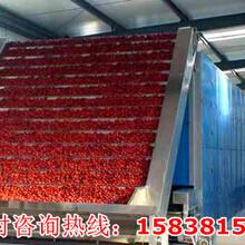 饲料烘干机设备厂家上海上海周边图片
