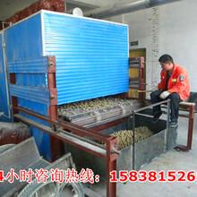 银耳烘干机图片安徽亳州图片