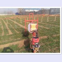 天津宁河优质300升农用杀虫打药机图片