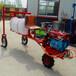 江蘇無錫乘坐式自動噴霧機三輪自走打藥機價格