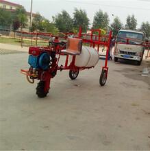廣東珠海農用自走式噴藥機柴油三輪打藥車廠家圖片