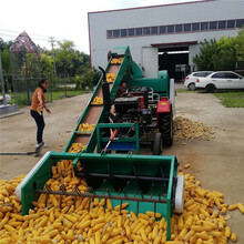 新疆昌吉耐用型新款玉米脱粒机商家图片