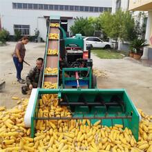 江西景德镇新型自走式玉米脱粒机价格图片