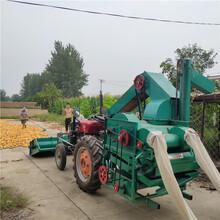 广西钦州最快的大型玉米脱粒机厂家图片