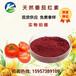 番茄紅素5%天然番茄紅素原料多種規格1%-10%食品級水溶性