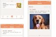 寵物寄養app開發方案