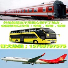 光泽县高加索养殖基地图片