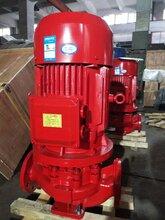 上海贝德泵业直销CCCF认证消防泵XBD3.1/5G-L自动单级泵消防泵图片