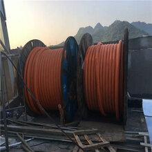 练塘镇哪里回收通信电缆-练塘镇本地电话图片