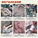 水產品加工設備,魚類前期處理加工,300型魚肉采肉機