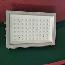 护栏灯杆式50WLED防爆灯、60W防爆灯厂家图片