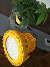 武汉户外BLD202-100WLED防爆照明灯防爆照明吸顶灯100WAC220v壁挂式led防爆灯厂家图片