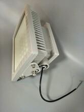 多功率led防爆灯AC220v防粉尘100W防爆led泛光灯壁挂式安装led防爆灯厂家河北图片