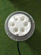 BLD201-LED防爆灯厂家20w防爆LED泛光灯LED防爆照明灯图片