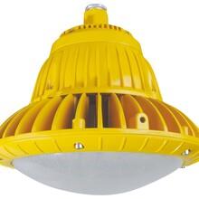 免维护LED防爆灯80WLED防爆固态灯图片
