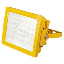 LED防爆投光(泛光)灯图片