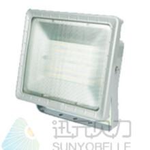 LED防水防尘防震防眩灯BLG503图片