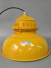 贵州LED防爆灯120W图片