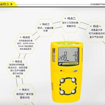 BW疏散型便携式氧含量测定器GAXT-X-DL