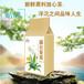 春季蒲公英茶去濕氣纖體袋泡茶代用茶oem代加工廠貼牌