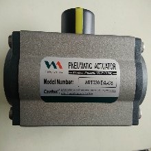 ART020DA-CS美國VAA系列氣動執行器圖片