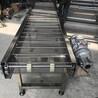不锈钢网链输送机械果蔬清洗食品输送机械专业定制