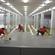 上海环氧地坪施工