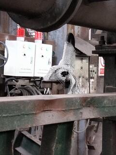 中间包烘烤器熄火切阀报警控制装置,厂家引导安装图片5