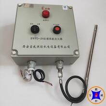 定制鋼化廠鍋爐點火棒,焦爐煤氣高頻半導體點火裝置,防爆型圖片