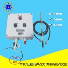 鉆井油田火炬自動點火器,BWFD-20煤氣起壓放散點火裝置圖片