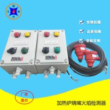 紫外線火焰檢測器BWZJ-13工作原理,開關量火焰檢測器圖片