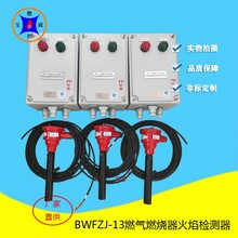 内窥式管式炉膛火焰检测器,火焰检测探头工作原理图片