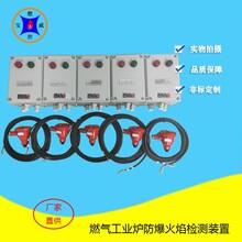 防爆火焰檢測器,寶威燃控紫外線火焰檢測器生產廠家圖片