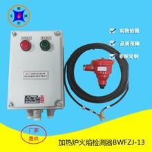 加熱爐防爆火焰檢測器輸出開關量信號BWFZJ-13安裝說明圖片