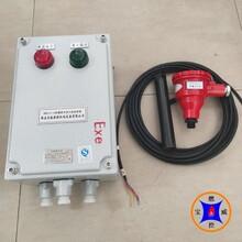 220V防爆火焰檢測裝置,寶威燃控管式爐火焰檢測設備圖片