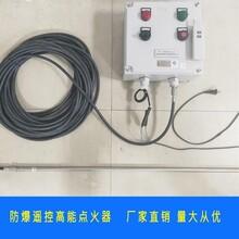 遠程遙控防爆試氣電子點火裝置,BWFY-12安全環保點火圖片