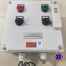 多通道煤粉鍋爐點火,BWFY-12遙控防爆點火定制點火電纜圖片