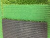 博纳人造草坪足球场丨舒适耐用运动好